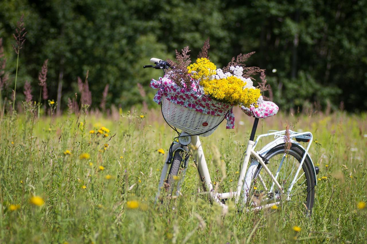 Kuvassa pölkupyörä ja sen etukori on täynnä keltaisia kukkia.